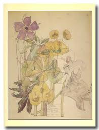 Flores de Mackintosh