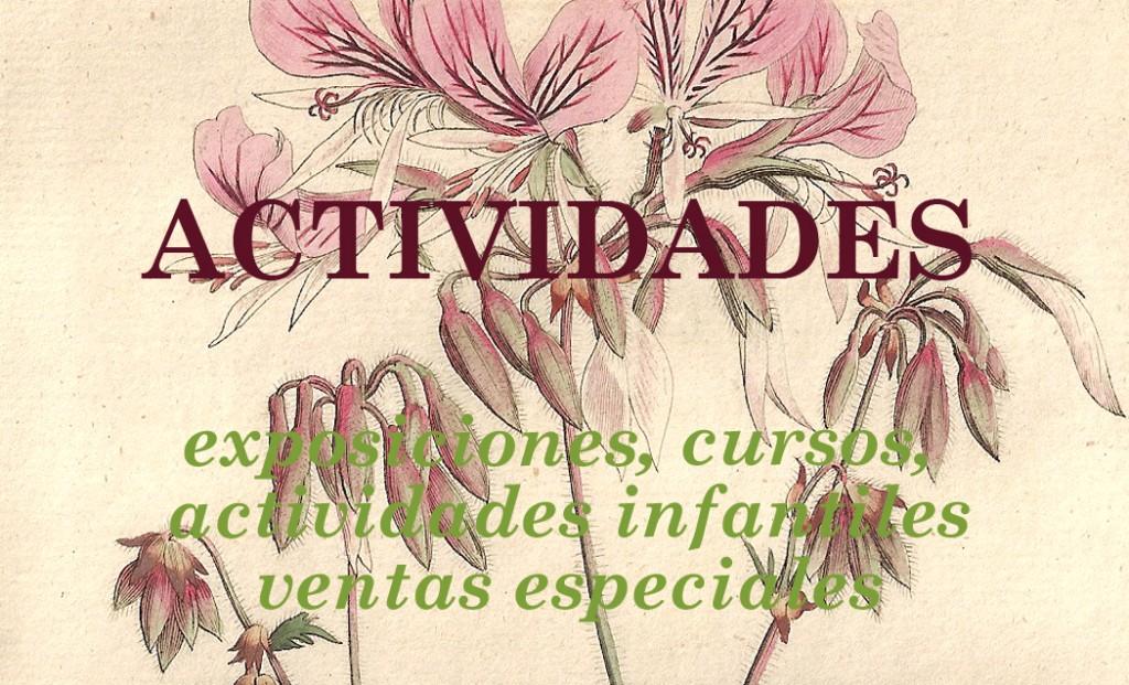actividades de la empresa By Botany