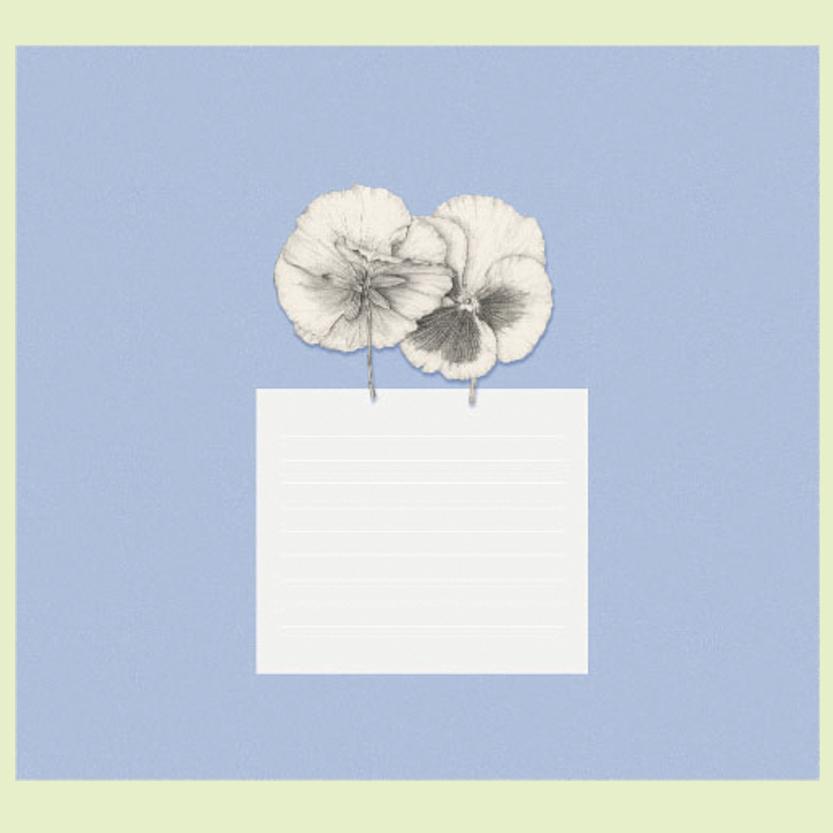 Album azul, hoja de presentacion