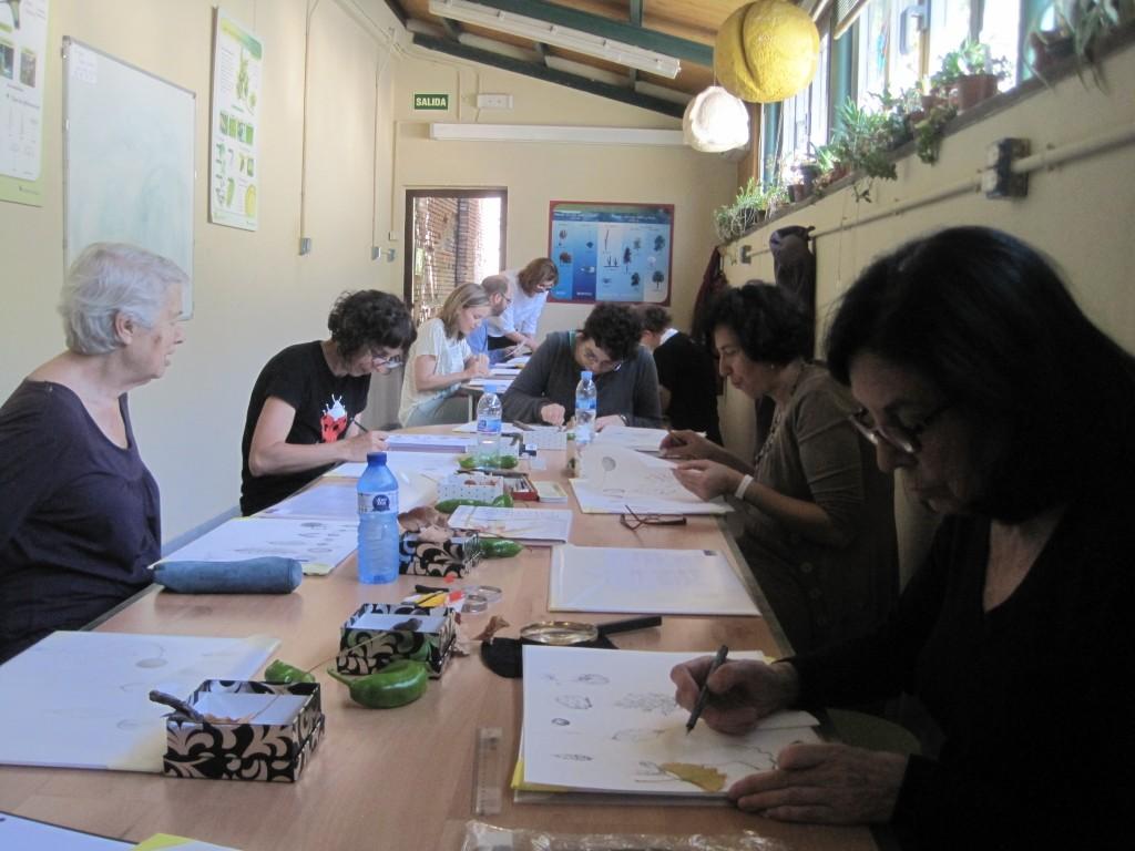 Dibujando en el aula