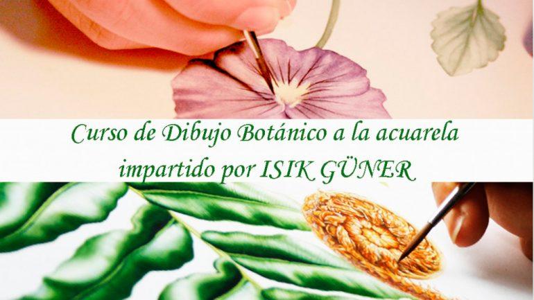 Curso de Ilustración Botánica a la Acuarela con Isik Güner