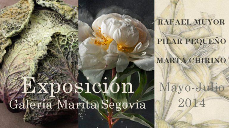 Pilar Pequeño, Rafael Muyor y Marta Chirino en la Galería Marita Segovia